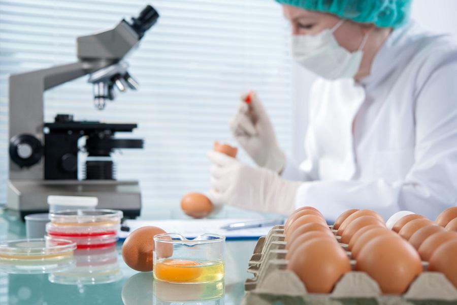 食品微生物安全和新兴检测技术前沿研讨会-www.bzwz.com标准物质网