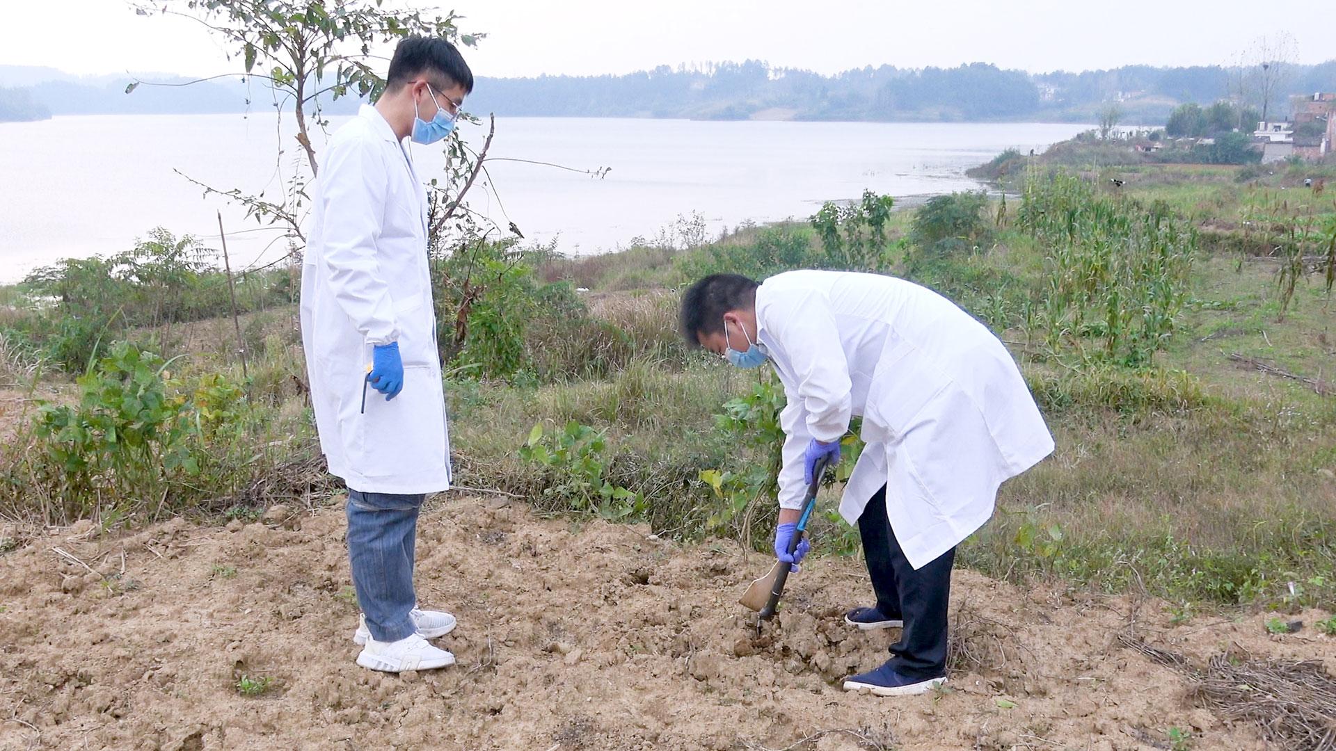 土壤采样技术-点播-www.bzwz.com国家标准物质网