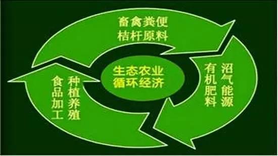 因地制宜推动有机循环农业发展的若干思路与对策(四)-www.bzwz.com伟业计量