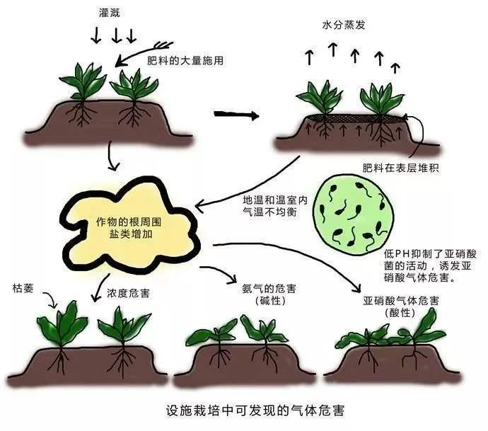 土壤阳离子交换量两种测定方法的比较(一)-www.bzwz.com伟业计量
