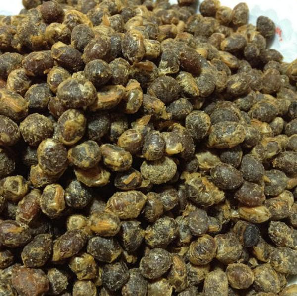 常压室温等离子体诱变技术选育曲霉型豆豉发酵菌种研究(二)