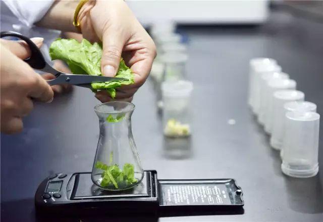 我国食品检测行业质量管理的现状及其展望(二)-www.bzwz.com伟业计量