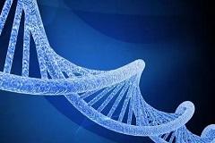 基因治疗市场持续升温,国产创新成果显现