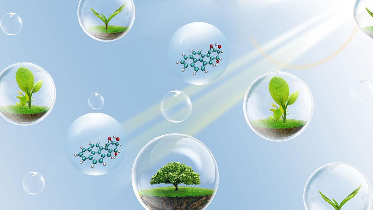 土壤中多環芳烴的檢測以及重金屬污染與修復研討會-培訓中心-www.aycpw.cc偉業計量