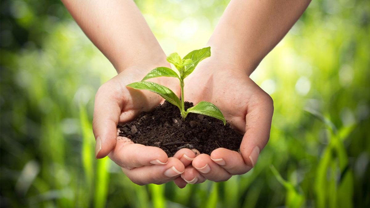 土壤样品中甲基汞和半挥发性有机化合物的检测研讨会-www.bzwz.com国家标准物质网