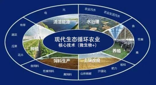 循环农业发展体系评价及优化策略(二)-www.bzwz.com伟业计量