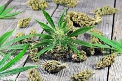 泰国公共卫生部发布关于《食品中含四氢大麻酚和大麻二酚的污染物标准》的公告