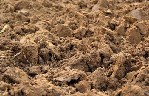 土粒的粒级和土壤的质地(一)