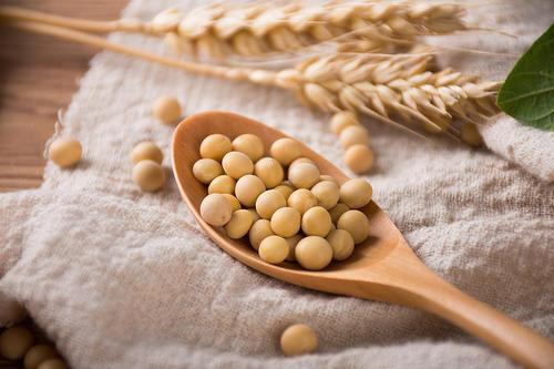 黄豆中蛋白质含量的测定-www.bzwz.com伟业计量